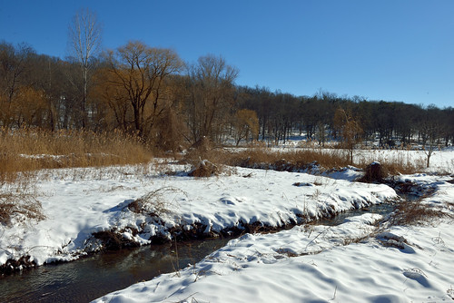 newyork landscapes parks wetlands streams yonkers brooks tibbettsbrookpark yonkersnewyork