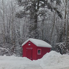 Thu, 02/05/2015 - 11:35 - I see this red shed every day on my way to work and I finally got a shot of it in the #snow #winter #contrast #nofilter