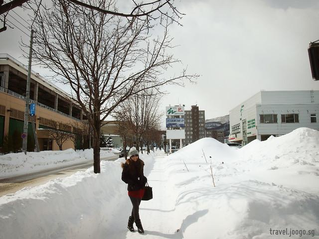 Sapporo 1 - travel.joogo.sg