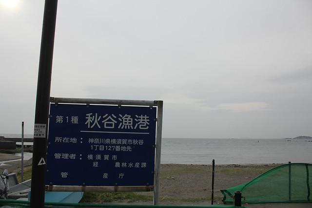 大楠山_49