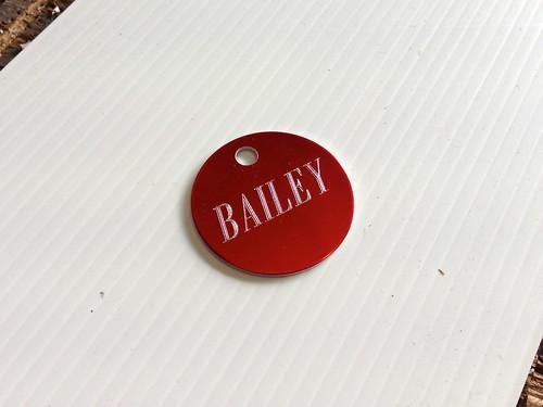 Bailey's Dog Tag