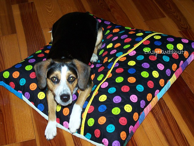 Lily's Quilted Dog Bed