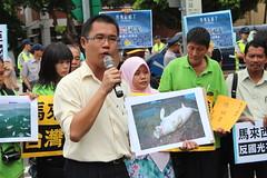 馬來西亞議員陳鴻彬手持儒艮圖片,證明當地確有儒艮存在,卻遭開發單位漠視。