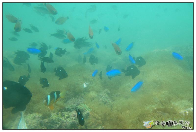 2013歐船長東海休閒漁業_100