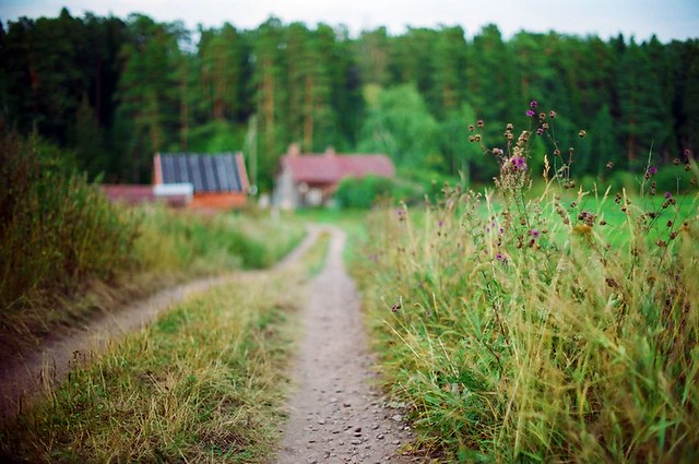 Природа Валаама Nature of Valaam