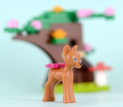 41023 Fawn's Forest