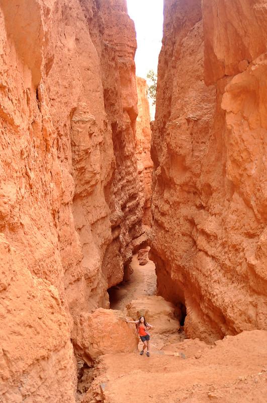 Bryce Canyon #11