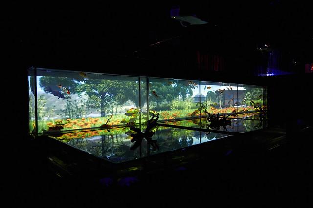 Art Aquarium 2013 22/23