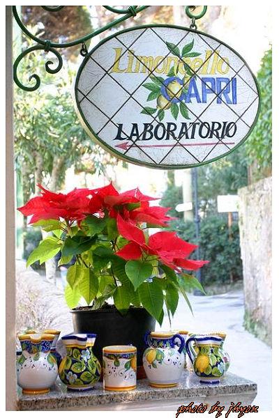 1108878278_卡布里島的小店,專賣一種特殊的萊姆酒,超嗆!
