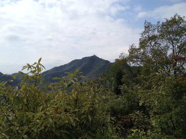 西山から望む岐阜城