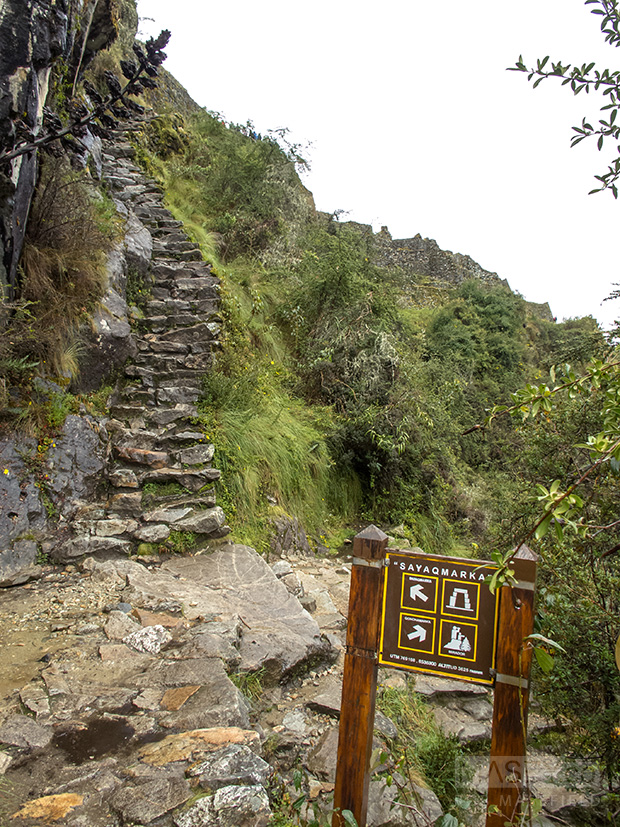 The narrow steps heading up to 'Sayacmarca'.