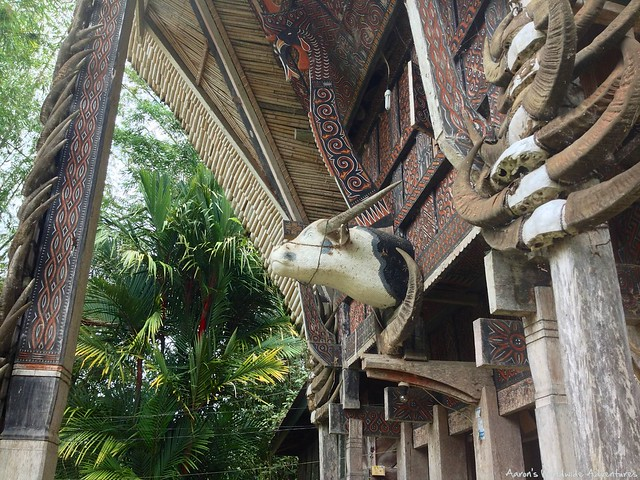 Tana Toraja A Culture Whose Views On Death Will Blow Your