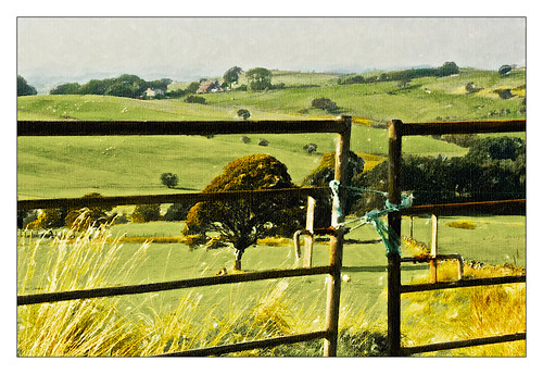 trees england painterly art grass rural painting landscapes countryside mac sheep gates farm farming rope lancashire canvas tied alienskin snapart applecrypt snapart3