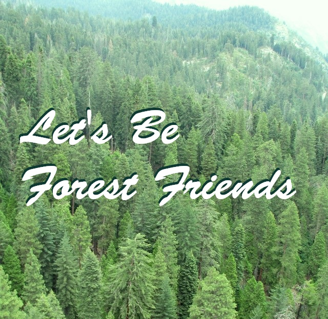 Let's Be Forest Friends