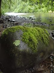 Molalla River Recreation Area