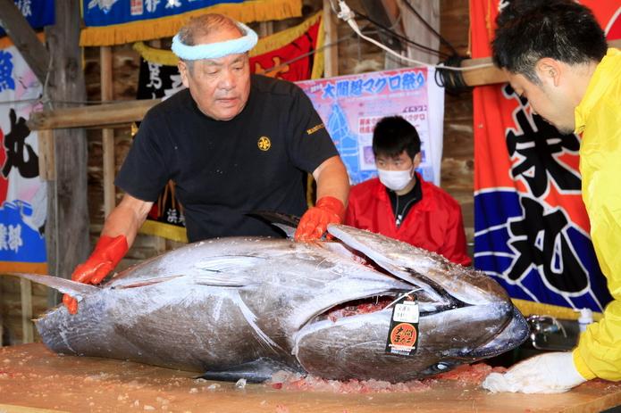 大間鮪魚 (2)