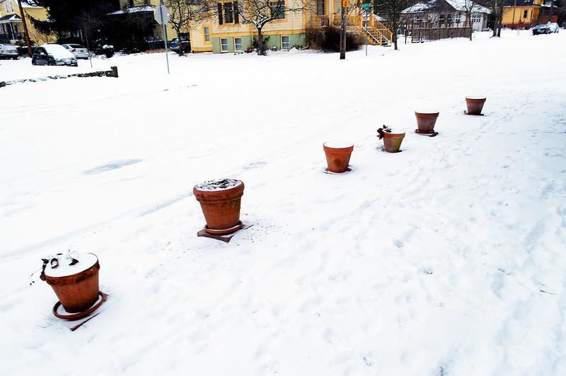 Frozen Planters