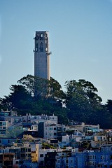 Coit Tower in the Mid- Morning Sun light in Jan