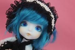 Blue Haru