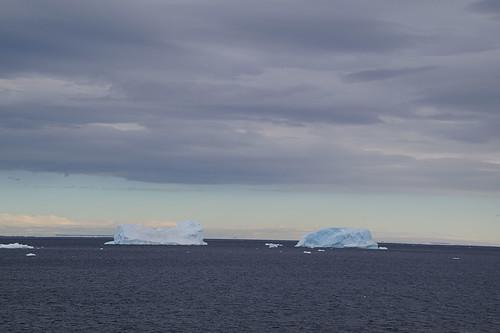 003 Brown Bluff  ijsbergen