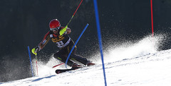 Janyk  manoeuvres the final World Cup slalom course of his career in Kranjska Gora, SLO