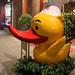 Peking_Duck_IMG_6411