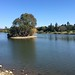 Los-Gatos-Creek-Trail 2014-03-15