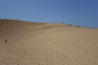 鳥取砂丘(4)