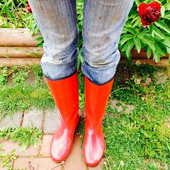 Got my gardening jeans on. The paint splatters camouflage me during peak bloom :) #garden #fashion