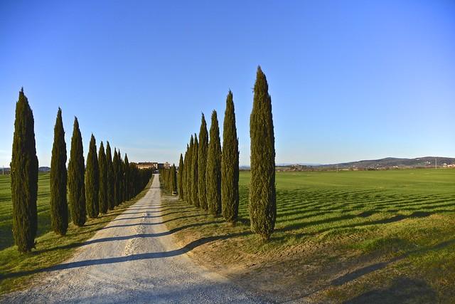 Antonio Cinotti - Borgo Beccanella, Asciano, Tuscany [EXPLORE]