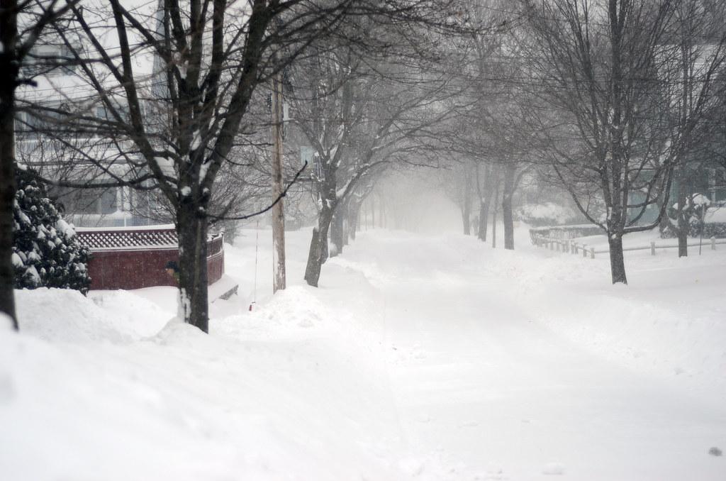 Blizzard Jan 27, 2015