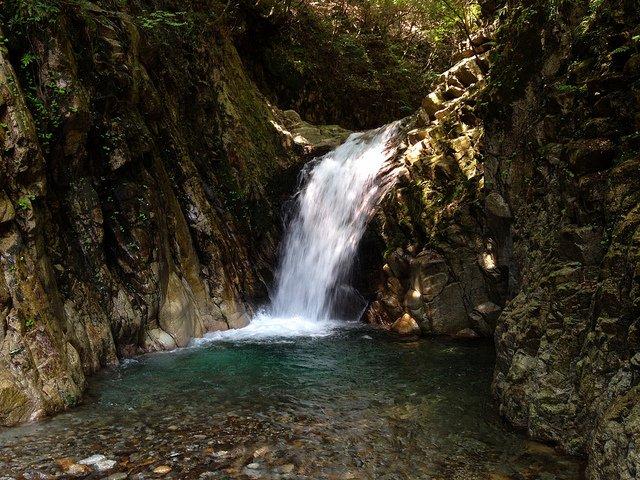 竜ヶ岳 魚止滝