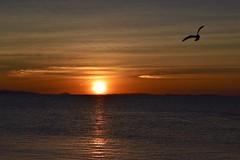 Sunsets and Sunrises & Moons