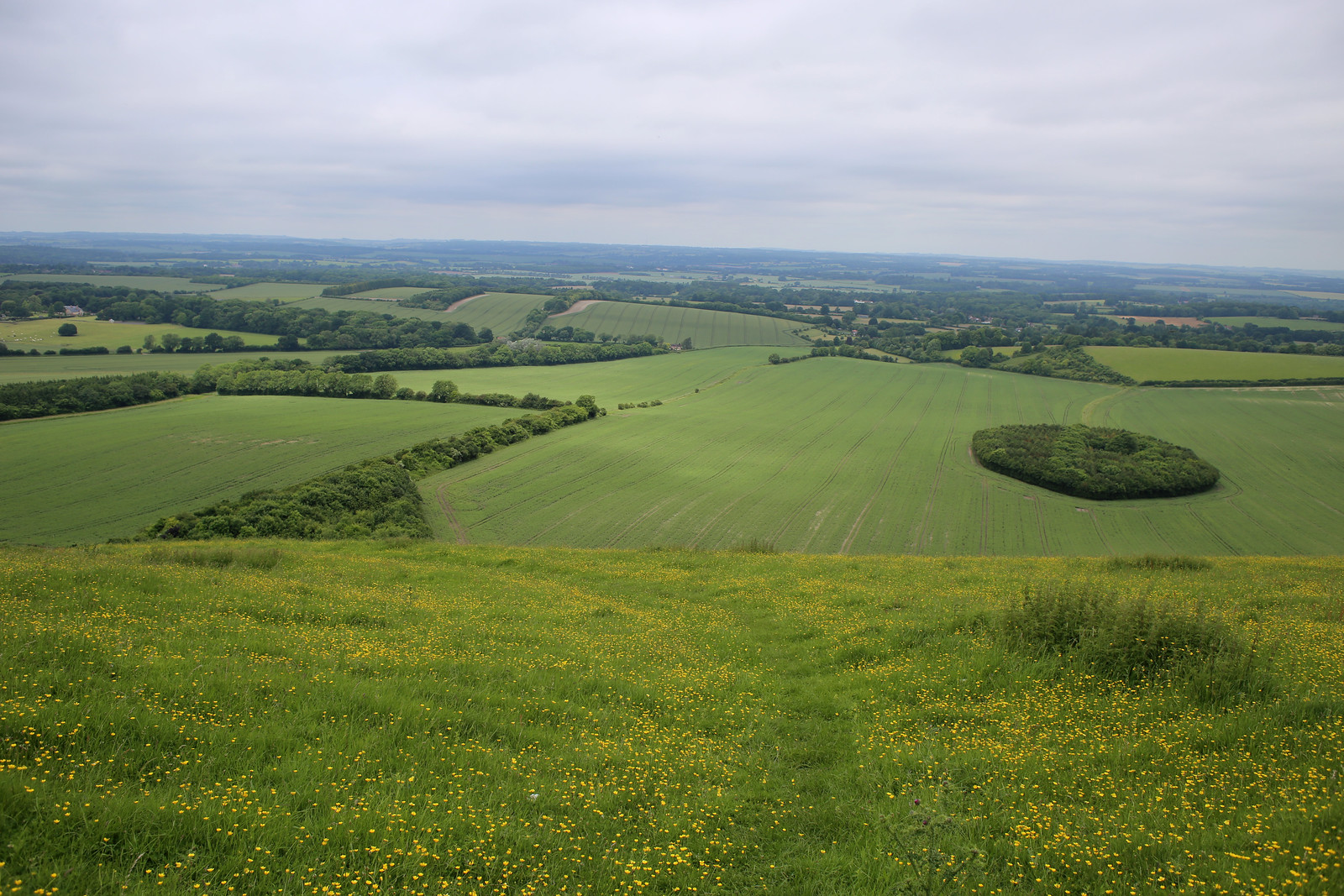 View from Inkpen Hill
