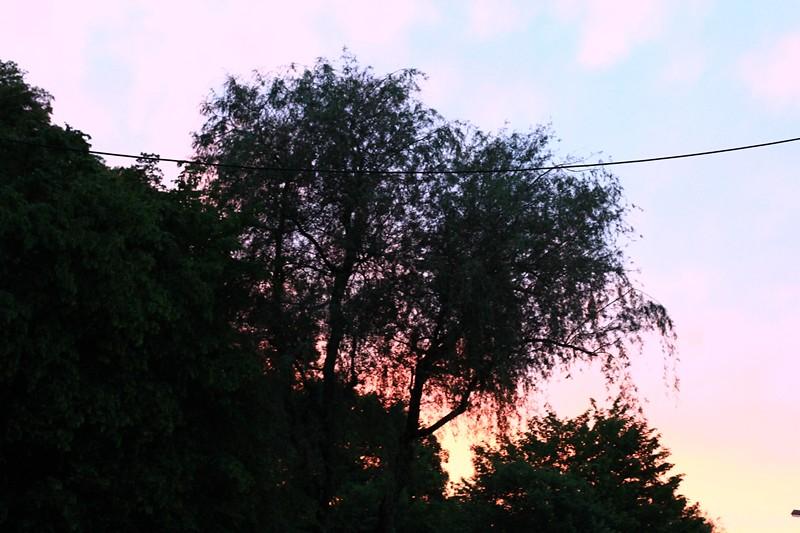 Bild 009