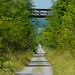 Bicycle on the Trans-Canada Trail by andyscamera