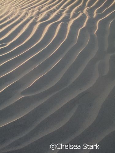 """Golden sand1""""© Chelsea Stark http://www.chelseastarkphotography.comxx by chelseastarkphotography.com"""