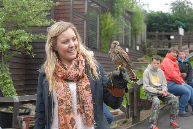 kielder-epic-kielder-blogger-challenge-leaplish-waterside-park-birds-of-prey-centre
