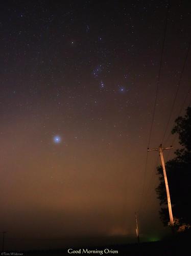autumn fall fog stars lights star timelapse october colorful foggy astrophotography sirius orion astronomy canismajor constellation orionnebula 2013 Astrometrydotnet:status=solved tomwildoner Astrometrydotnet:id=supernova9599
