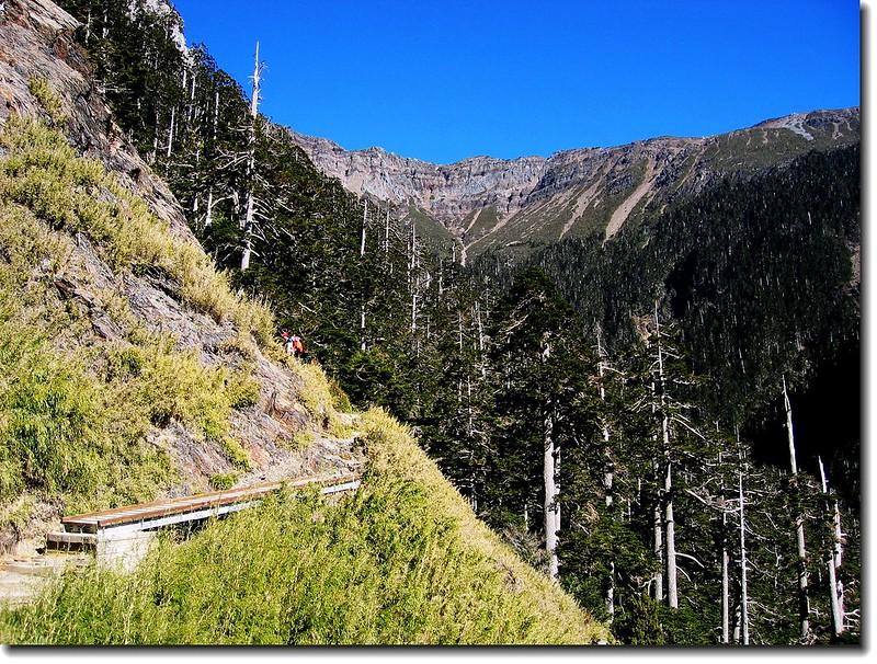 登山步道沿途景觀 2
