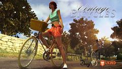 Lockwood - Drey Bikes
