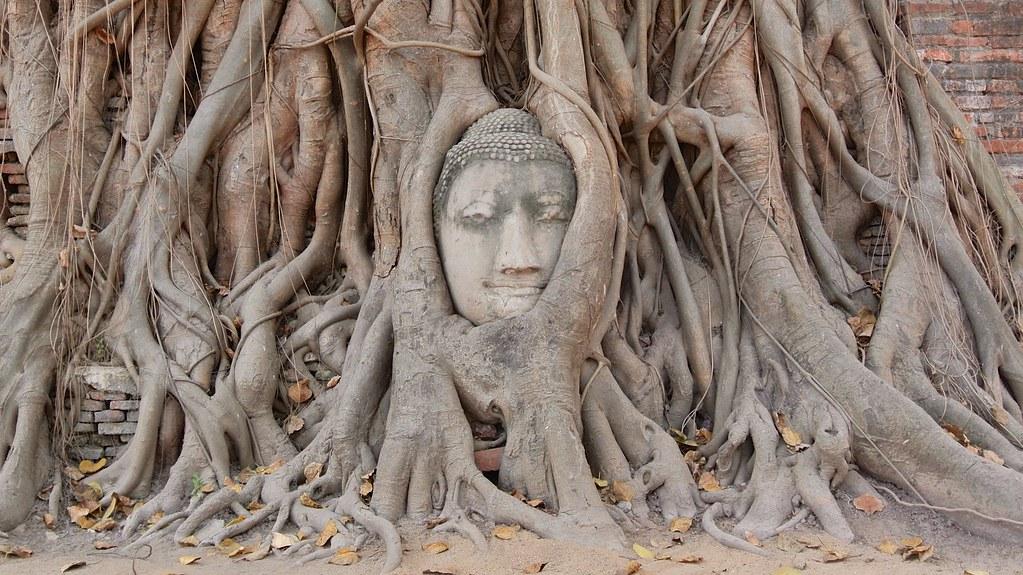 Ayutthaya, Thailand. 50
