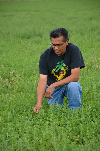 Reggie Premo, Shoshone-Paiute Tribal member, utilizes conservation practices such as land leveling and water irrigation pipeline on his commercial alfalfa fields. He obtained some financial assistance on these practices through the USDA StrikeForce for Rural Growth and Opportunity. USDA photo.