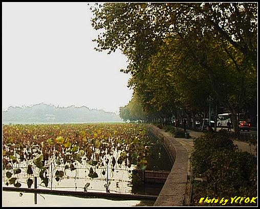 杭州 西湖 (其他景點) - 666 (北山路湖畔)