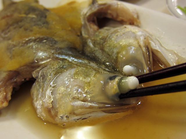 午仔魚02