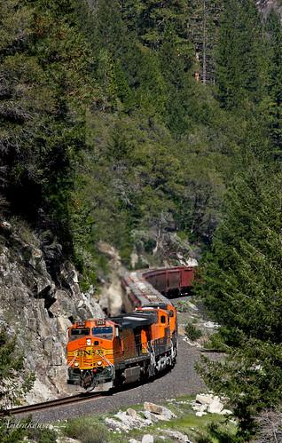 train trains bnsf featherrivercanyon freighttrain graintrain bnsfrailway featherriverroute upcanyonsubdivision crestacalifornia