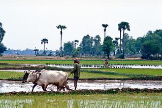 Cambodia22_02