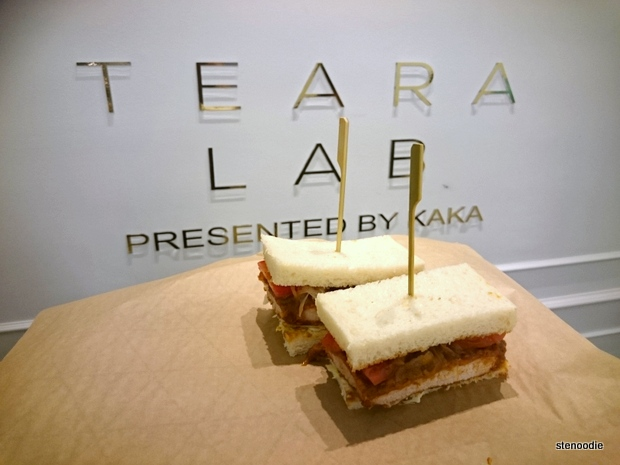 Teara Lab presented by KAKA