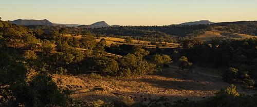 morning trees light panorama rural sunrise landscape australia farmland hills bushwalking qld queensland bushwalk 2016 scenicrim mtbarneynationalpark mtmay sonya7r