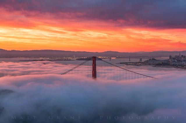 Morning Fog SF